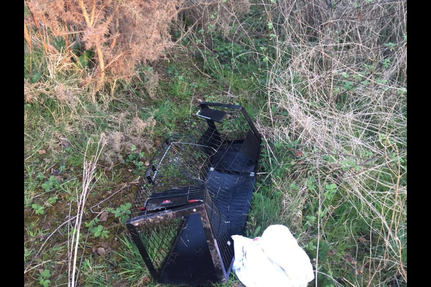 The ManxSPCA uses the humane cat traps to capture feral cats that need treatment.