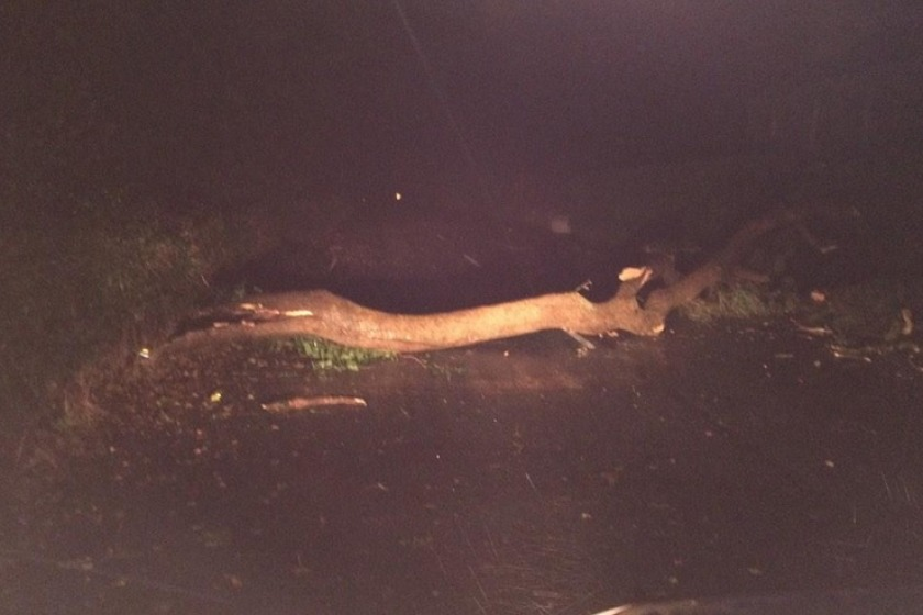 Police expect there will be fallen trees in the morning