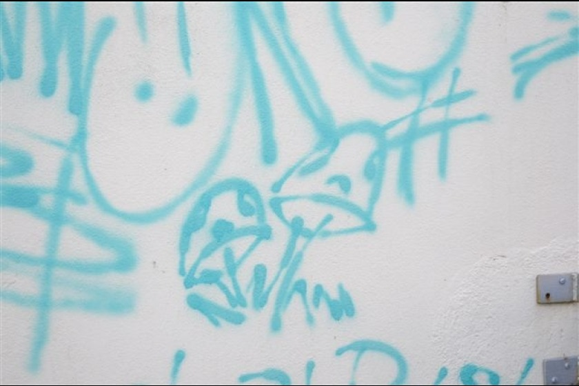 An example of the graffiti sprayed in the area