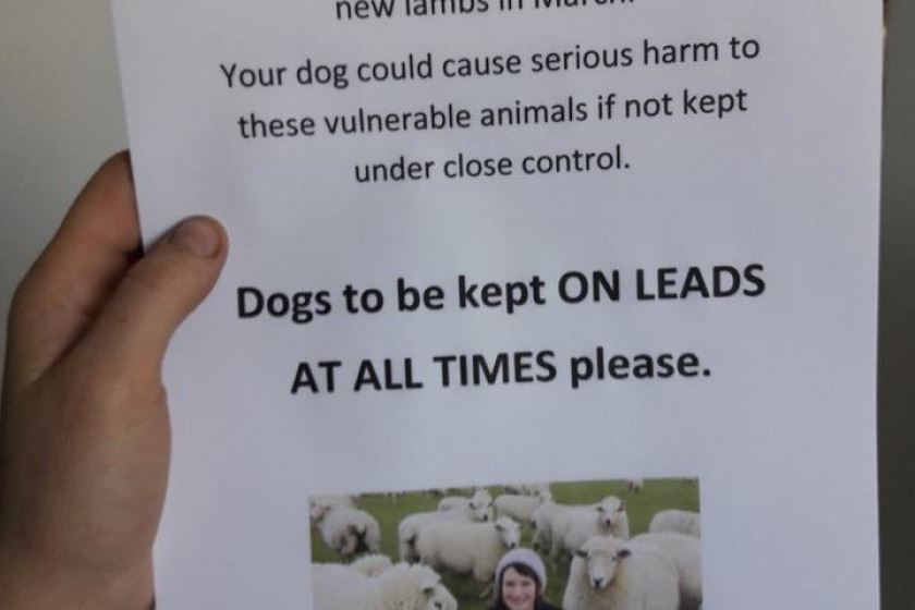 One farmer is using this poster to remind dog walkers to keep their pets under control (photo from Isle of Man Living)